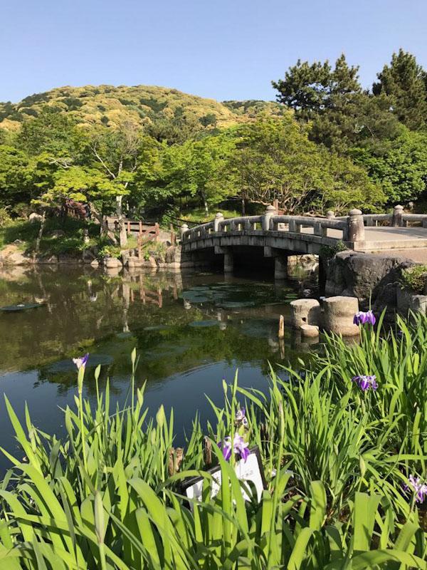 Jardim Japones Quioto Japão