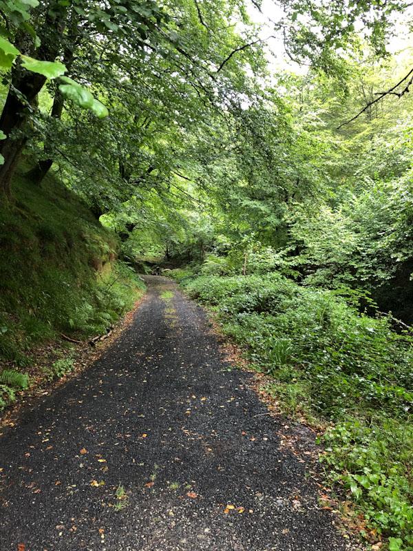 caminho de santiago pirineus