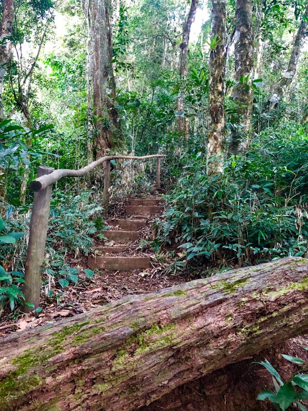 Trilha Pico do Baepi Ilhabela