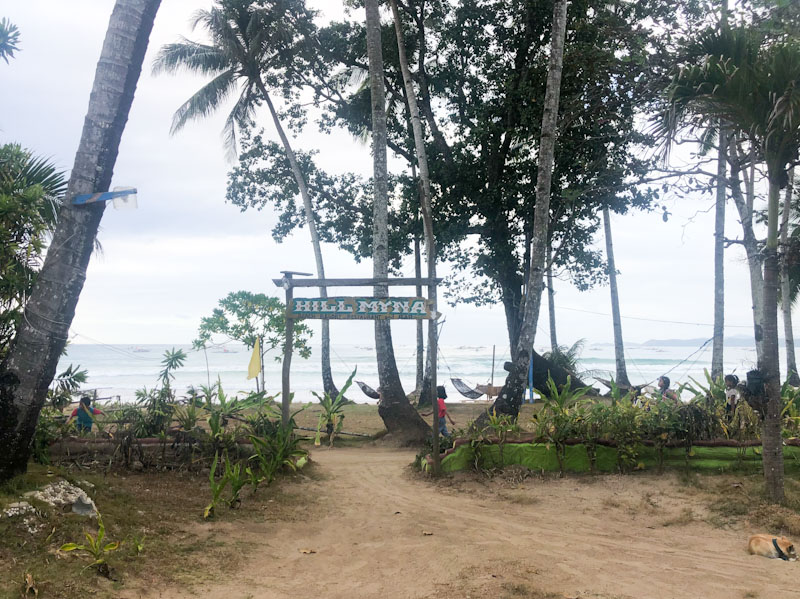 Hill Myna Beach Sabang